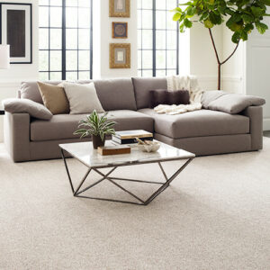 Carpet flooring for modern living room | Midway Carpet Distributors